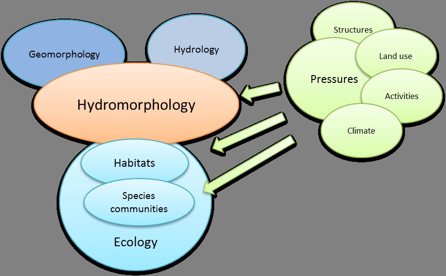 Hydromorphology